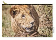 Lioness Hiding Carry-all Pouch