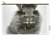 Lionhead Rabbit Carry-all Pouch