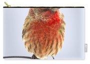 Little Beauty Male Finch I Carry-all Pouch