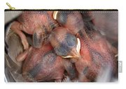 Little Bird Dreams Carry-all Pouch