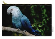 Little Blue Macaw Cyanopsitta Spixii Carry-all Pouch