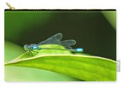 Little Dragonfly Carry-all Pouch