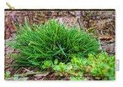 Little Grass Mound Carry-all Pouch