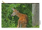 Little One Carry-all Pouch by Karol Livote