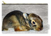 Little One Carry-all Pouch