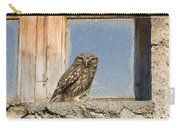 Little Owl Athene Noctua On Window Carry-all Pouch
