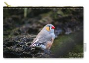 Little Red Beak Carry-all Pouch