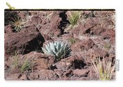 Lone Agave Carry-all Pouch