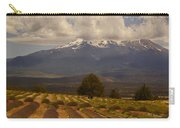 Lone Tree And Lavender Fields Carry-all Pouch
