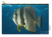 Longfin Spadefish, Papua New Guinea Carry-all Pouch