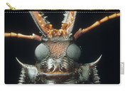 Longhorn Beetle Macrodontia Cervicornis Carry-all Pouch