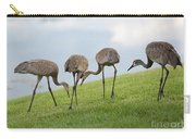 Look What I Found Carry-all Pouch by Carol Groenen