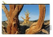 Looking Through A Bristlecone Pine Carry-all Pouch
