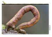 Looper Moth Geometridae Caterpillar Carry-all Pouch