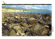 Low Tide At Gaviota Carry-all Pouch