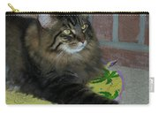 Lucky The Cat Carry-all Pouch