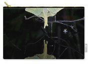 Luna Moth And Reflection Carry-all Pouch