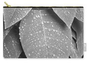 Lush Leaves And Water Drops 2 Bw Carry-all Pouch