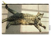 Lying In The Sunlight Carry-all Pouch