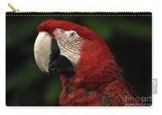 Macaw In Red Carry-all Pouch
