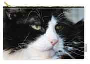 Maine Coon Face Carry-all Pouch