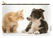 Maine Coon Kitten And Mongrel Dog Carry-all Pouch