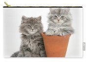 Maine Coon Kitttens Carry-all Pouch