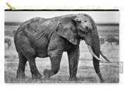 Majestic African Elephant Carry-all Pouch