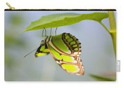 Malachite Butterfly On Leaf Carry-all Pouch