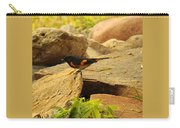 Male American Redstart On The Rocks Carry-all Pouch