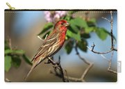 Male Finch Carry-all Pouch