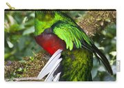 Male Resplendent Quetzal Carry-all Pouch
