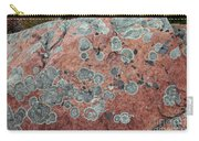 Map Lichen Carry-all Pouch