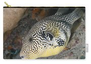 Map Pufferfish Arothron Mappa Carry-all Pouch