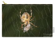 Marbled Orb Weaver Spider Eating Carry-all Pouch