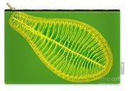 Marine Diatom Podocystis Spathulata Carry-all Pouch