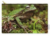 Marsupial Frog Gastrotheca Sp, A Newly Carry-all Pouch