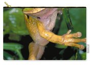 Masked Treefrog Carry-all Pouch