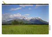 Matanuska View Carry-all Pouch