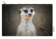 Meerkat Manor Carry-all Pouch