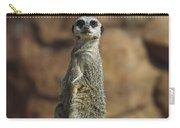 Meerkat Suricata Suricatta Sunning Carry-all Pouch by Konrad Wothe