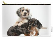 Merle Dachshund Pups Carry-all Pouch