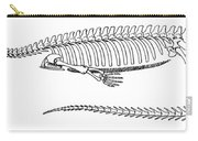 Mesosaurus Brasiliensis Carry-all Pouch by Science Source