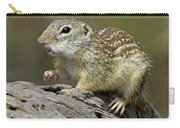 Mexican Ground Squirrel Carry-all Pouch