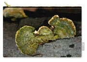 Michigan Jade Fungus Carry-all Pouch