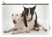 Miniature Bull Terrier Bitch, Lily Carry-all Pouch by Mark Taylor