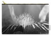 Miniature Tall Bearded Iris Named Consummation Carry-all Pouch