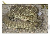 Mohave Diamondback Rattlesnake Coiled Carry-all Pouch