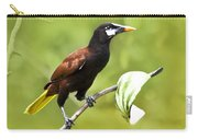 Montezuma Oropendula - Dp Carry-all Pouch