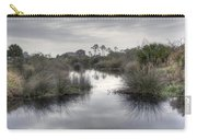 Moody Marsh Carry-all Pouch